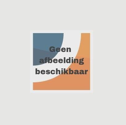 Kärcher Pad middelzacht, rood (5x 356 mm) 63690030 (s)
